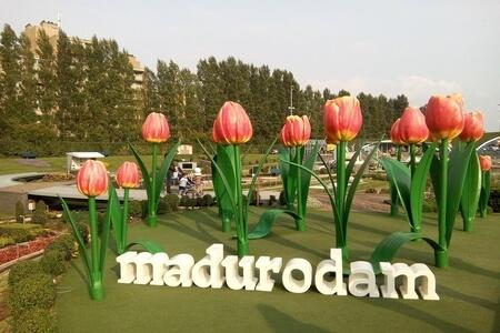 Madurodam image